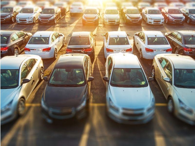 Vente de véhicules neufs et occasions 17
